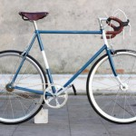 Singlespeed Remiganti